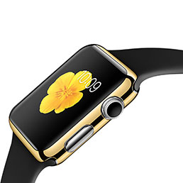 Etui Bumper Luxe Aluminum Metal C02 pour Apple iWatch 38mm Or