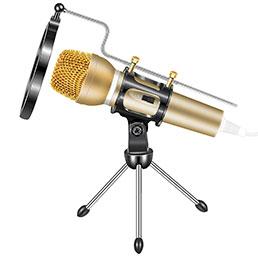 3.5mm Mini Microphone de Poche Elegant Karaoke Haut-Parleur avec Support M03 Or