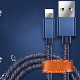 Chargeur Cable Data Synchro Cable L04 pour Apple iPhone 5 Bleu