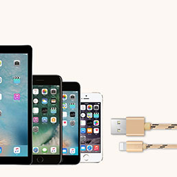 Chargeur Cable Data Synchro Cable L05 pour Apple iPhone 5S Or