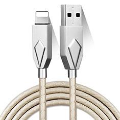 Chargeur Cable Data Synchro Cable D13 pour Apple iPad 10.2 (2020) Argent