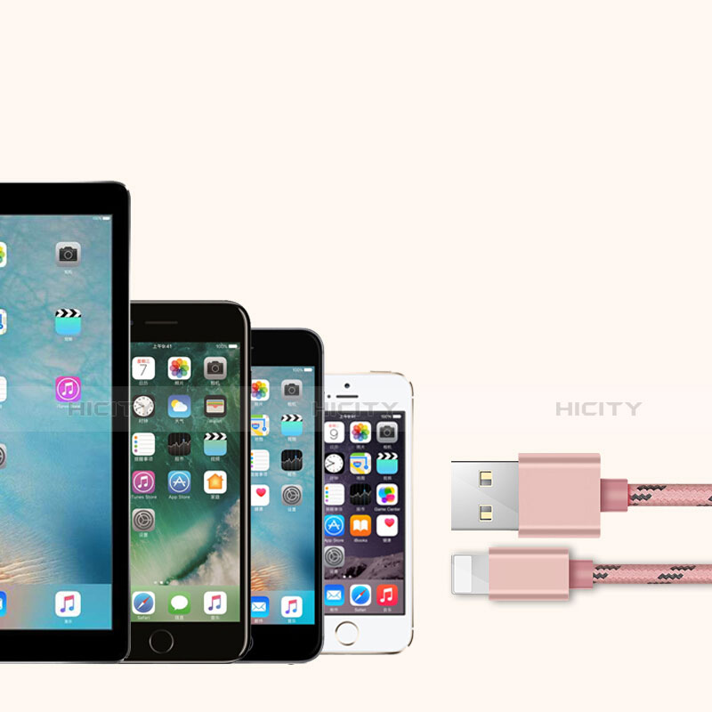 Chargeur Cable Data Synchro Cable L05 pour Apple iPhone 11 Pro Rose Plus